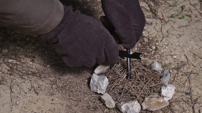 Top 25 Survival Skills to Know & Why