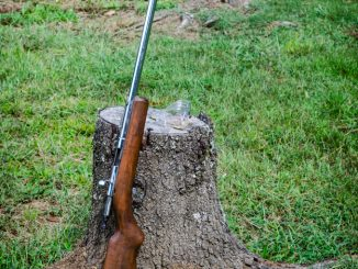 22 Caliber Rifle Hunting