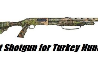 best turkey shotgun