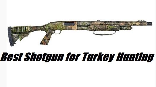 best turkey shotgun