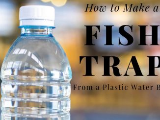 how to make a fish trap