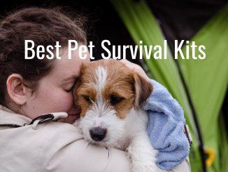 pet survival kits
