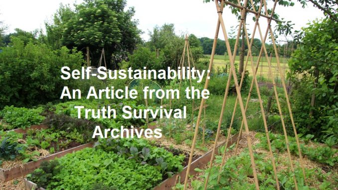 self sustainability