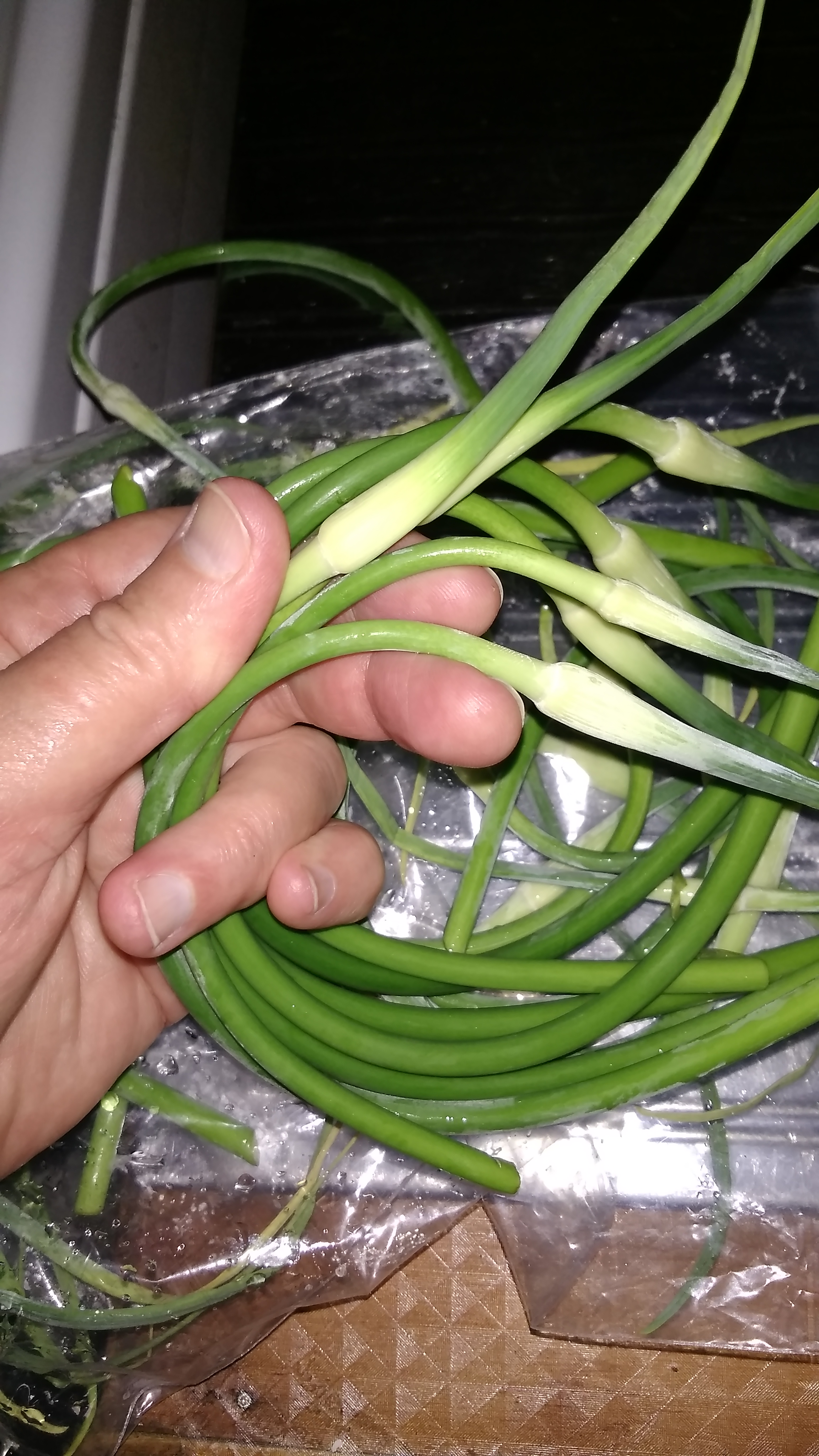 How to grow garlic - snip off the garlic scapes