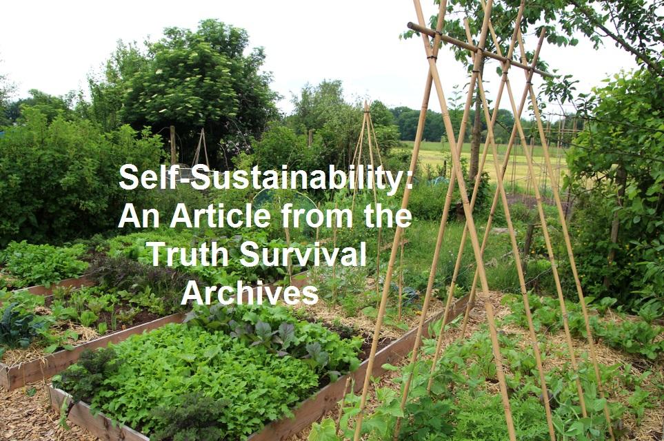 self sustainability